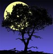 Moon Tree Designs